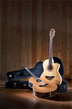 Manuel Rodriguez Guitars Flamenco Moderna